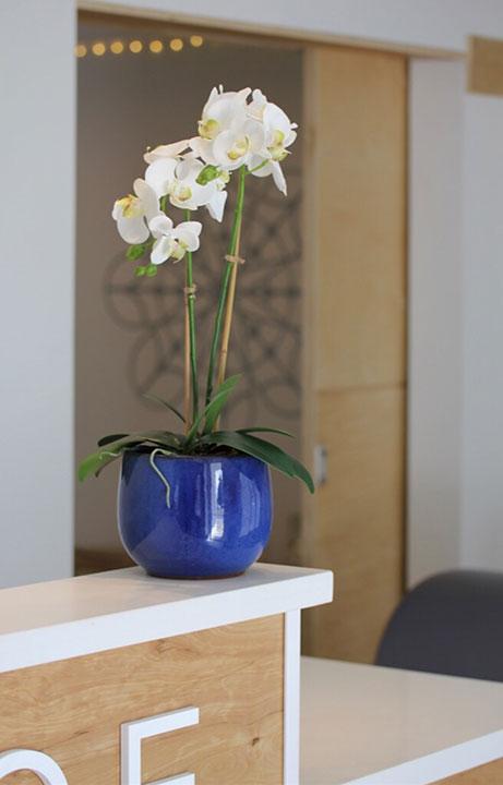 Grace Yoga + Pilates Detail, Commercial - Valerie Legras Atelier: Holistic Interior Design